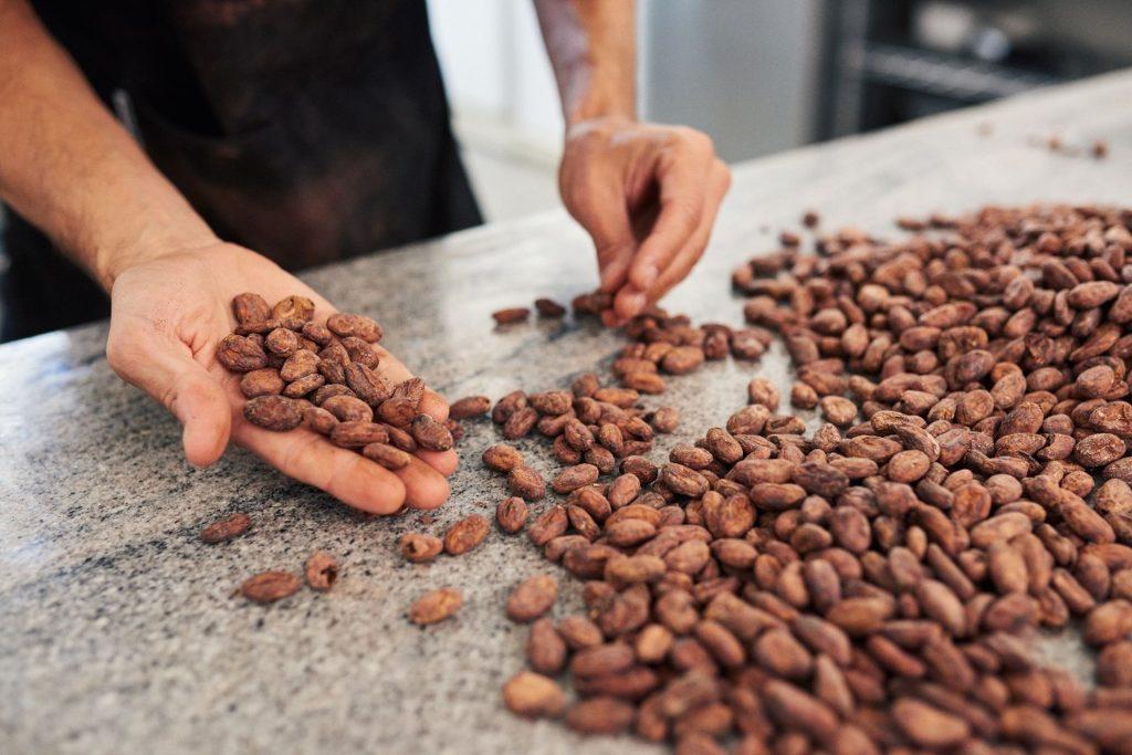 Comment faire du chocolat avec les fèves de cacao